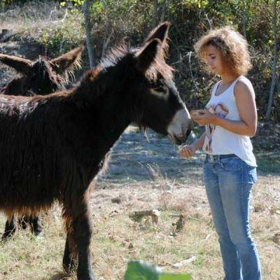 Elsa da de comer a Pirata, burro raza zamorano-leonés - Neathea